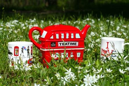 tea-time-1967729