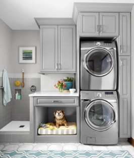 vertical-laundry chien