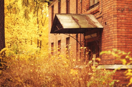 autumn-1180848_1920