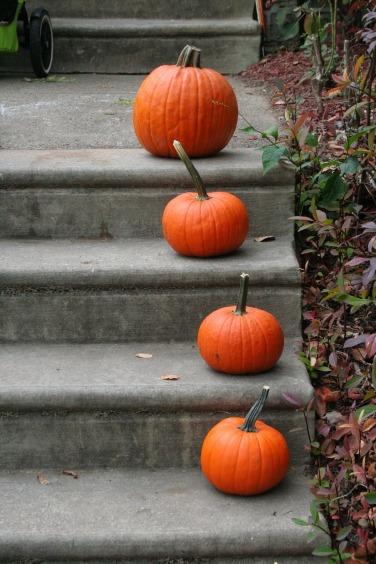 pumpkin-1170272_1920