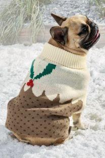 pull noel chien