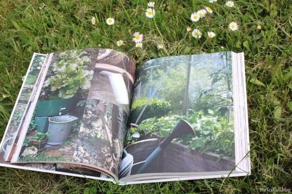 manuel jardin1 blog_GF