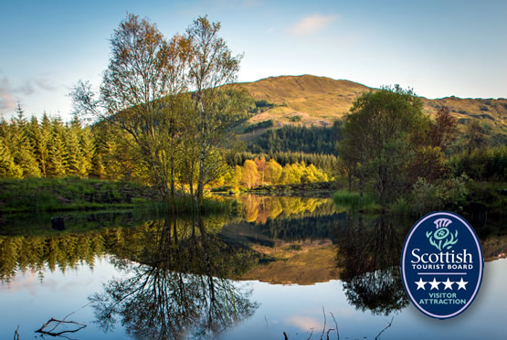 Highland-Titles-Nature-Reserve-1 glencoe wood