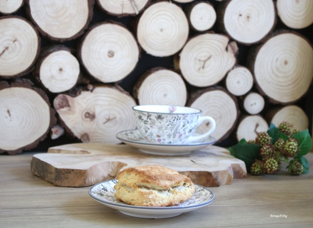 scone2 a- copie